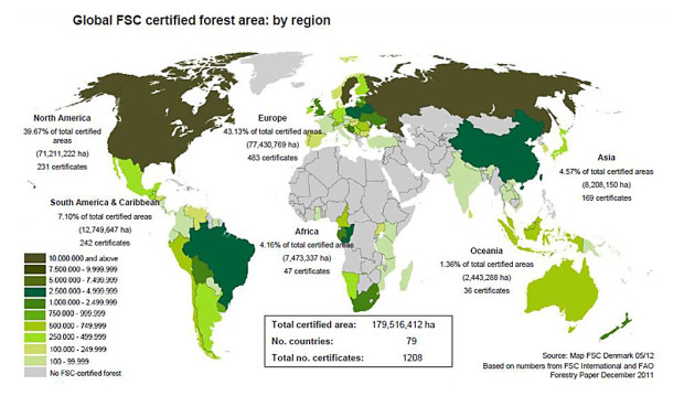 essay on illegal logging
